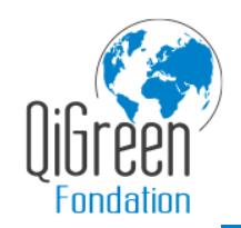 Qigreen logo